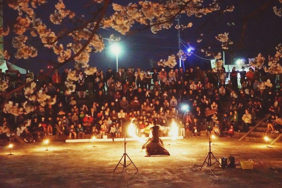 Fire Performance Sakura