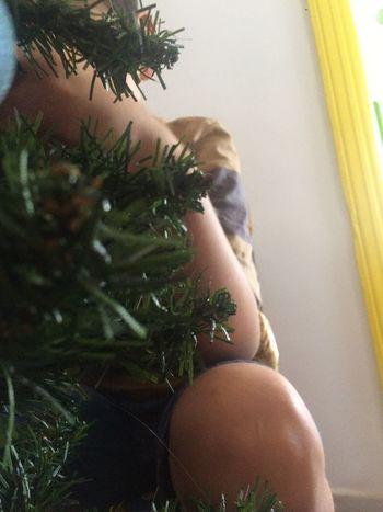 Árbol de Navidad Christmas Christmas Tree Tree Celebration Christmas Decoration Close-up Indoors  One Person Real People