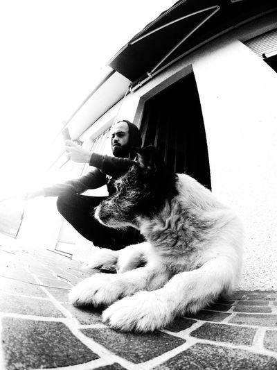 Parceiro de uma vida Snoopy Dog Dogfriend Gopro GoPro Hero3+ Chill