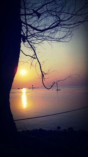 Sunset Paradise Pt. 2