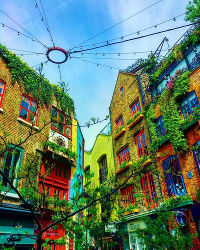 🎨 ...... London Neal's Yard Colors Colorful Covent Garden  Art Building Archtecture Travel Uk Travel Photography World England Adventure Photography EyeEm