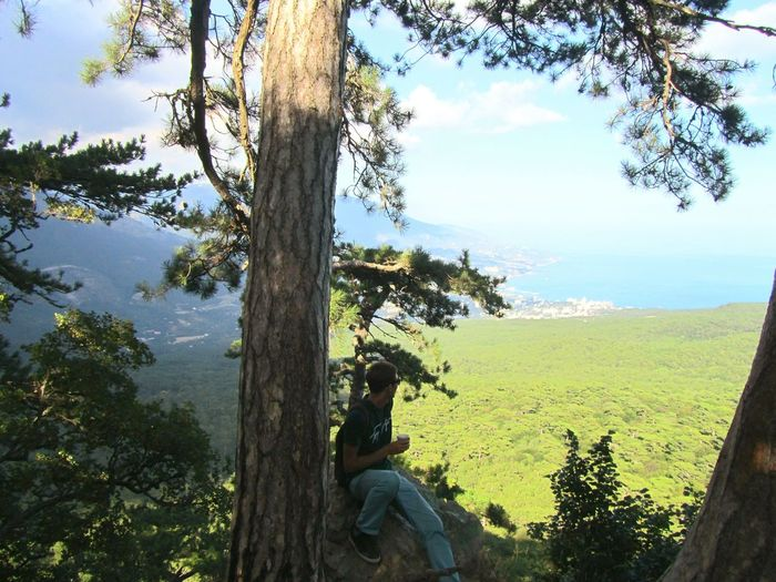 People sitting on tree trunk against sky
