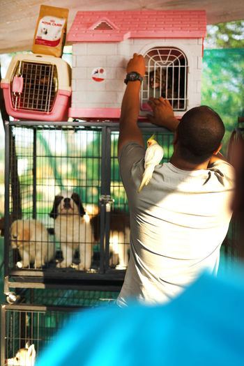 Animal Animal Behavior Animal_collection Bird Cage Lhasa Apso Pet Photography  Petshop Petstore Puppies Puppy