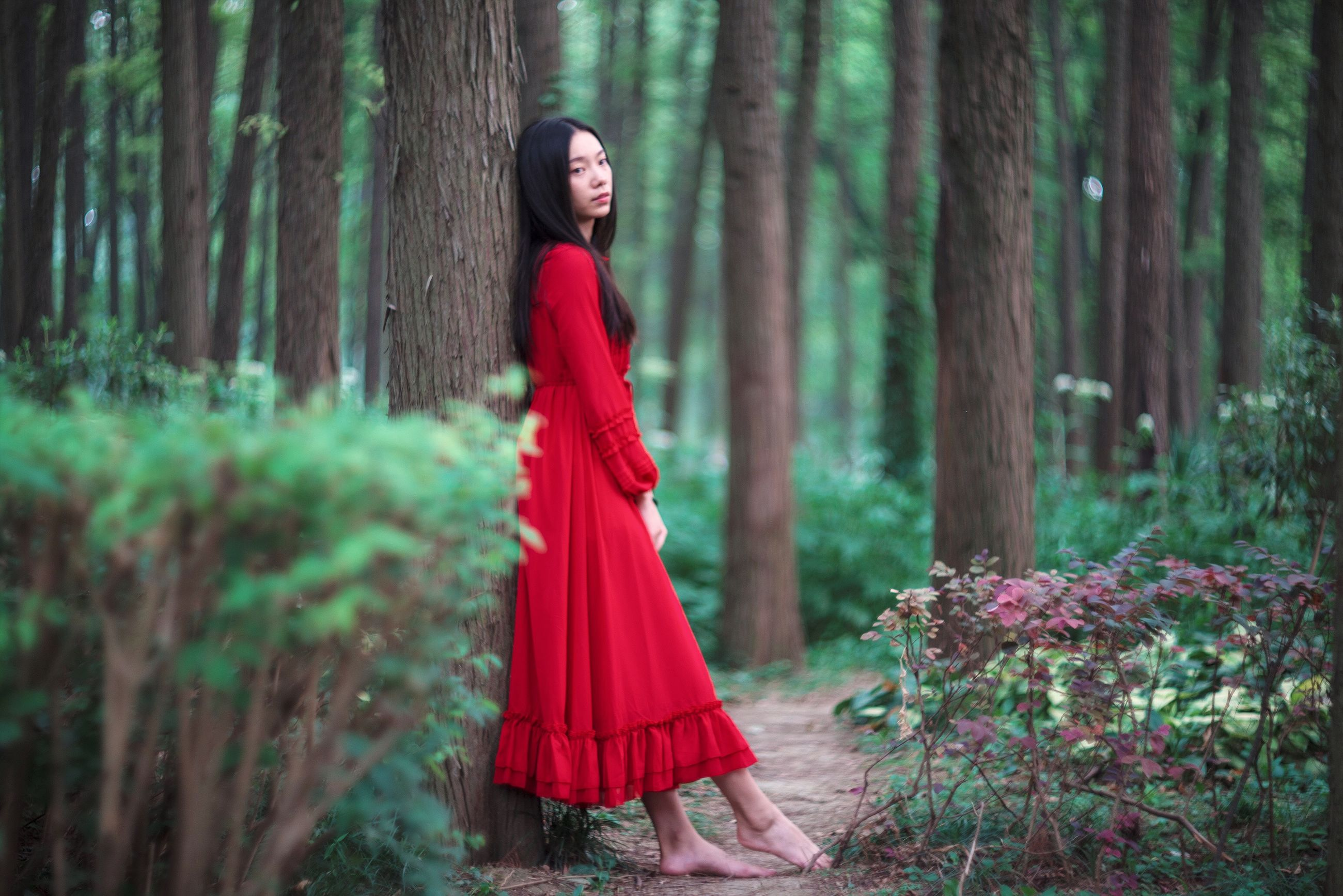 red, young adult, forest, lifestyles, tree, young women, standing, casual clothing, front view, leisure activity, dress, long hair, tree trunk, person, three quarter length, focus on foreground