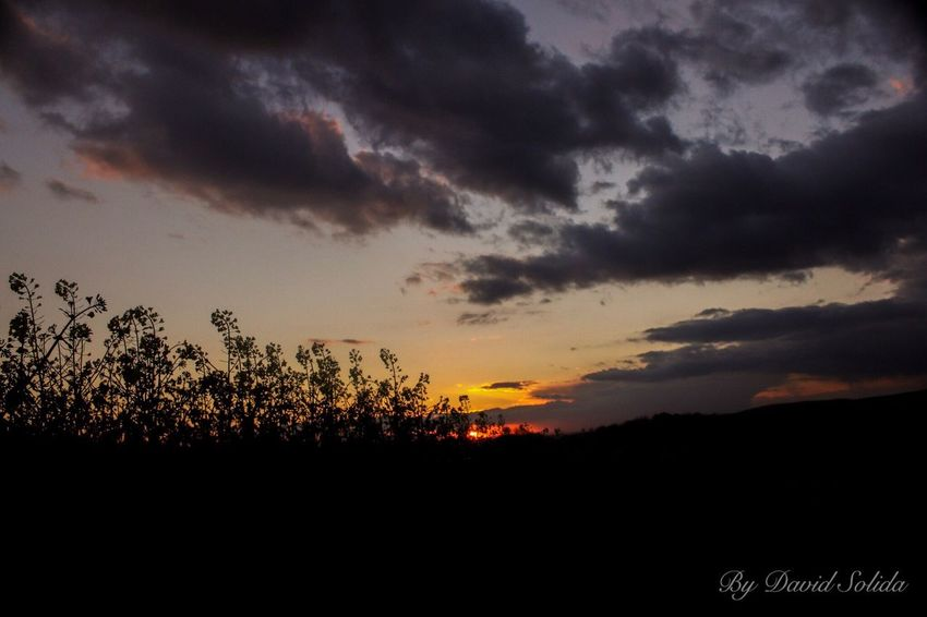 Landscape Sunset Silhouette Nature Beauty In Nature Sky Dramatic Sky Cloud - Sky Basel, Switzerland Canonphotography Photography