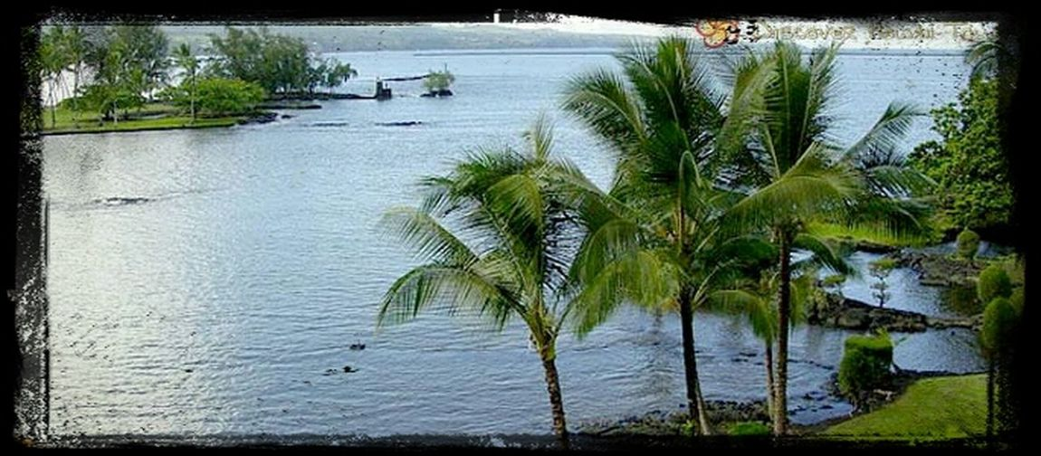 gonna have blast on my vacation away from Oahu ahtt Hilo, Hawaii lol (: