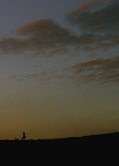 Silhouette man on field against sky at sunset