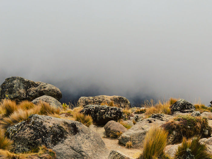 Volcanic rock formations in the foggy mountain landscapes of mount kenya, kenya
