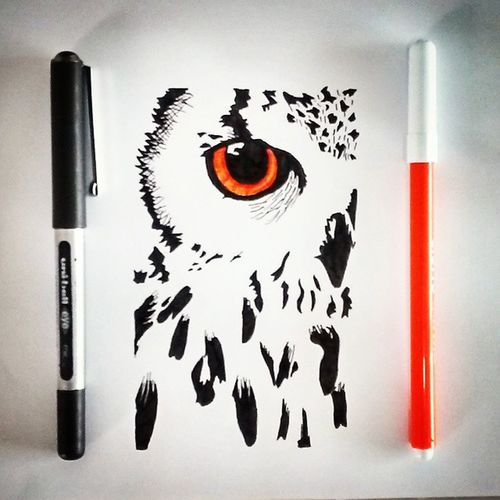 Dibujo Drawing Illustration Owl Art Black White Orange Creative Animal Bird Eye Talentthursdaytth