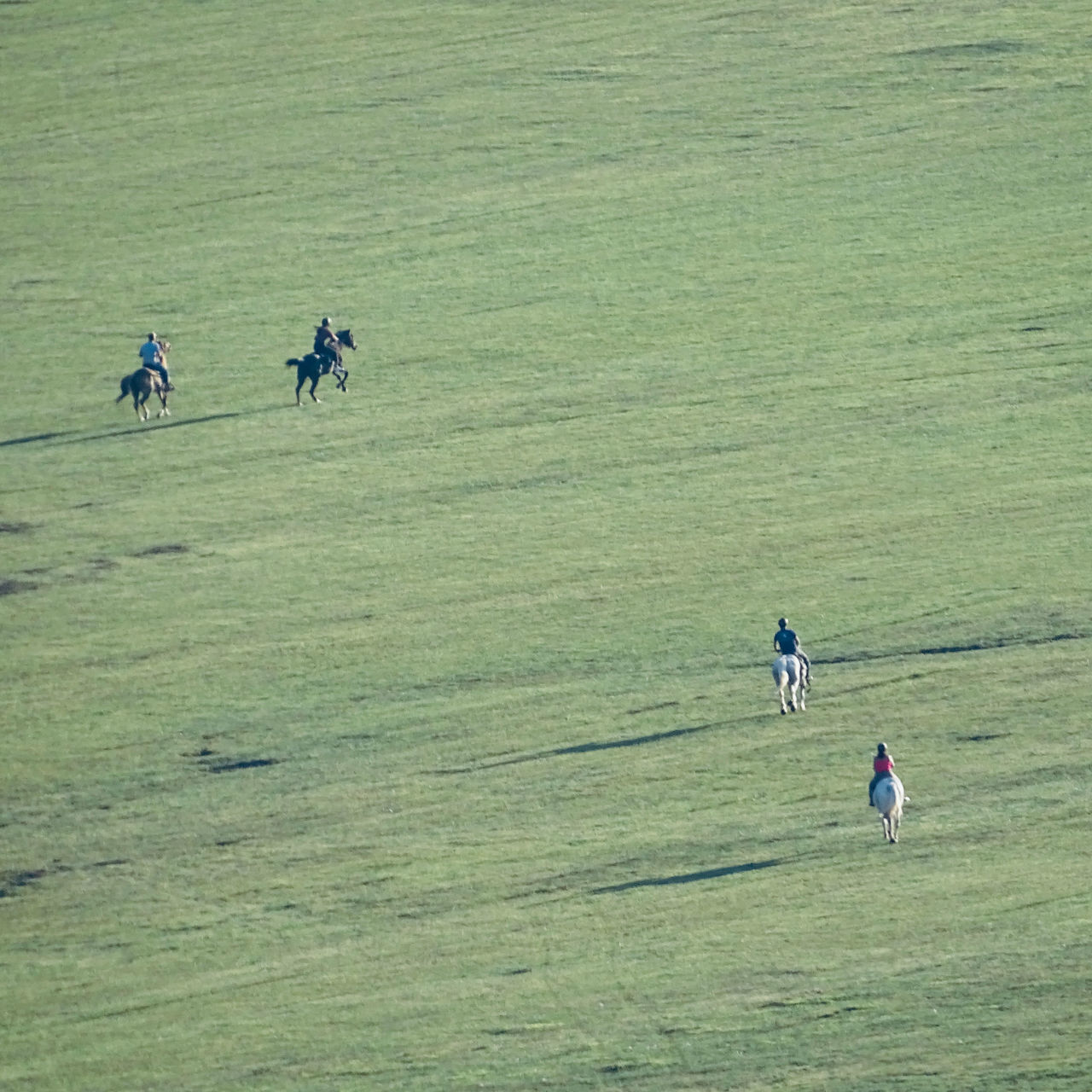 HIGH ANGLE VIEW OF PEOPLE WALKING ON THE LAND