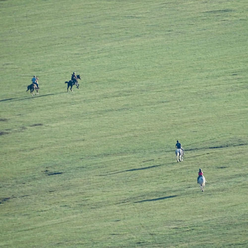 High angle view of people walking on land