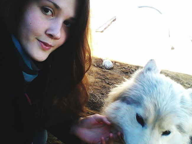 Me Dog Eskimo Dog White Selfie ✌ Spring Animal Isa