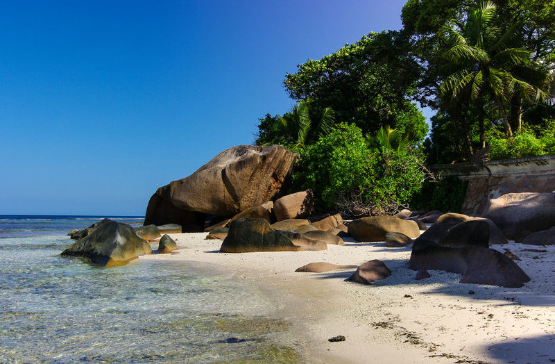 Seychelles Anse Gaulettes Nature Beauty In Nature Scenics - Nature No People Seychelles Beach Sand White Sand Palm Tree Travel Destinations Paradise Paradise Beach Ocean Natuer_collection Nature Colorful Sky Stone Rocks Rock - Object Green Color Beauty In Nature Africa Cloud - Sky
