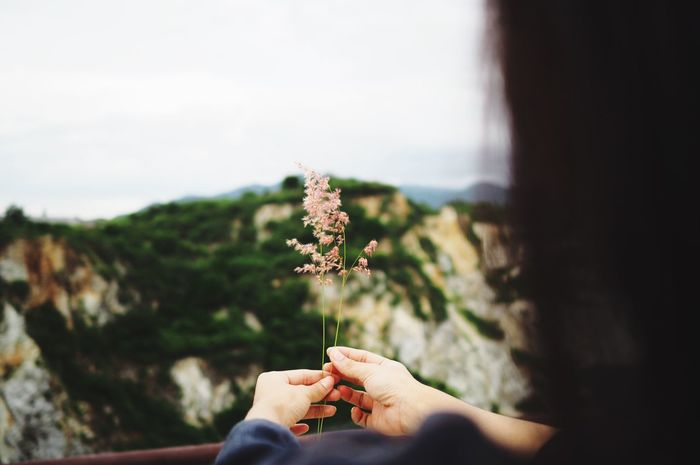 Flower on your hands EyeEm Selects Human Hand Hand Holding Plant Human Body Part Real People Focus On Foreground Personal Perspective Flower Day Flowering Plant Selective Focus Body Part Finger Tree Lifestyles Nature One Person Unrecognizable Person Leisure Activity