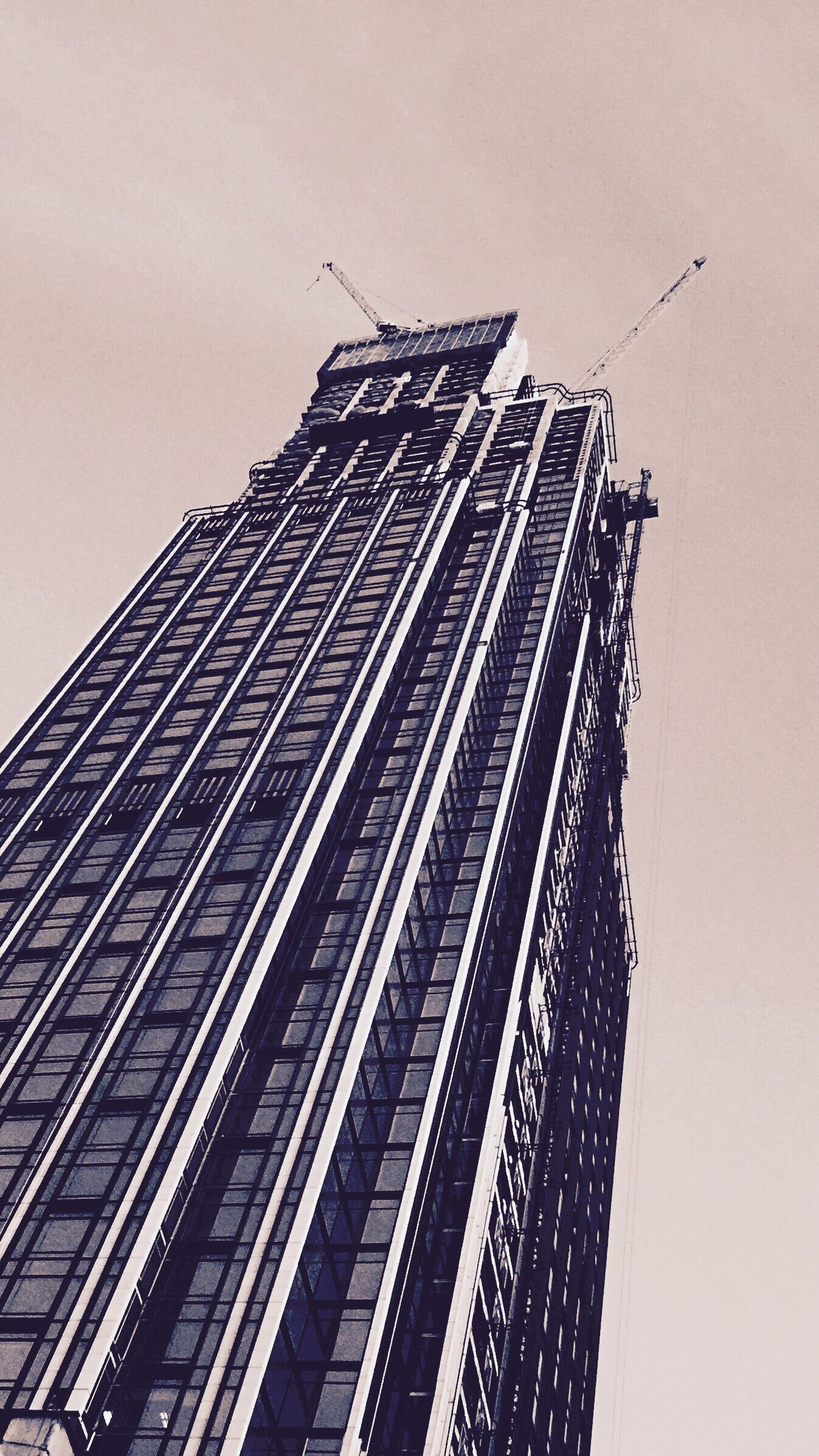 low angle view, architecture, building exterior, built structure, tall - high, clear sky, tower, bird, skyscraper, flying, city, modern, sky, animal themes, animals in the wild, capital cities, tall, development, office building, crane - construction machinery