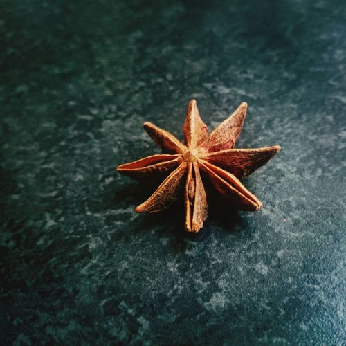 Foto de um anis estrela, usado geralmente para aromatizar pratos