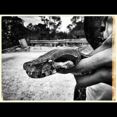 Instasize Bnw Blacknwhite Blancoynegro igcarabobo igersvenezuela igersaltosmirandinos. igersmiranda