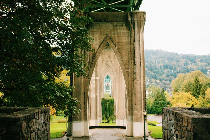Cathedral park under St. John's bridge. Portland, Oregon Discover Your City Stunning Fall Fresh On Market 2016
