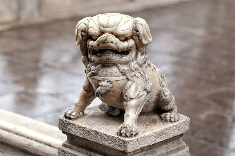 A Dog Scupture in 太原 中国 From My Point Of View Chinese Temple Canonphotography Traveling Eyem Photography in Taiyuan China