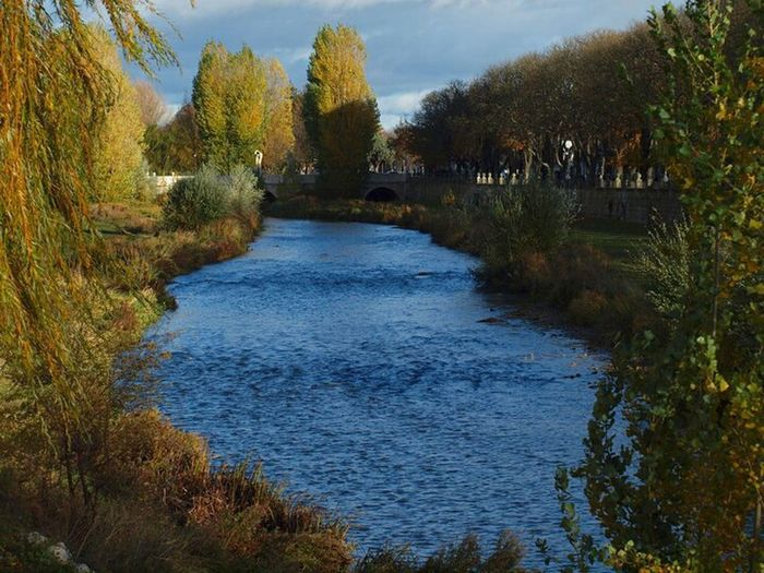 Water Outdoors Nature No People Plant Day Beauty In Nature River Autumn🍁🍁🍁