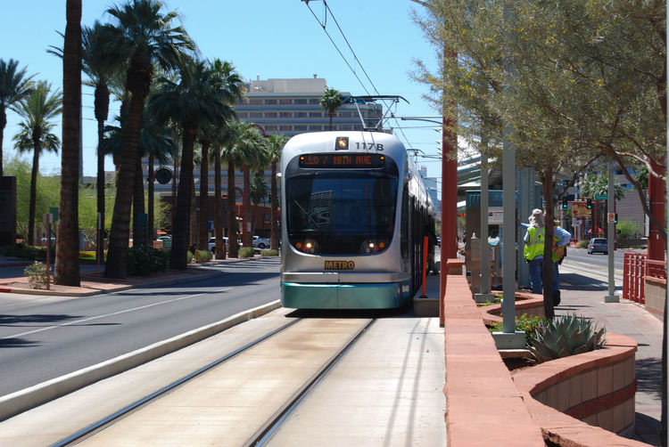 Tramway On Road By Palm Trees In City