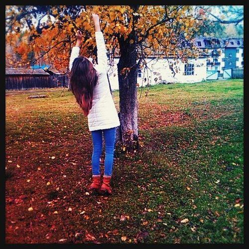 осень холодно ветервлицо покавсевыступают мыфоткаемсятаквот😃