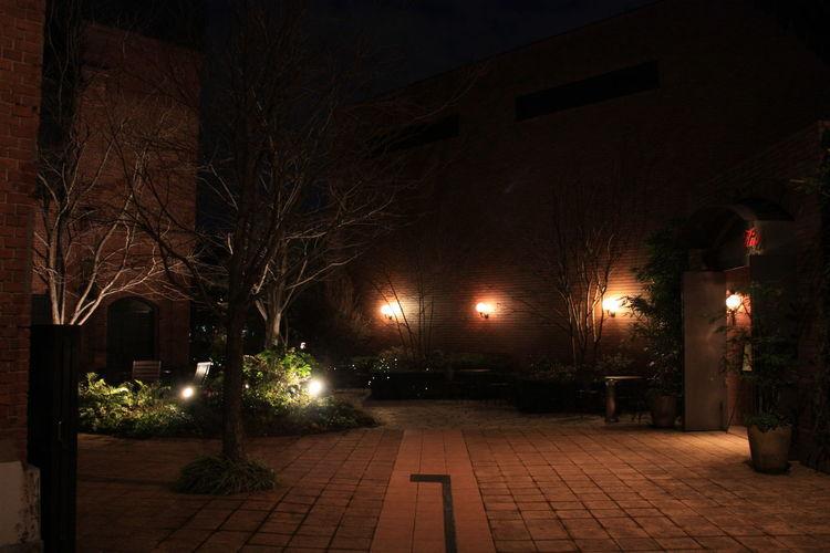 Japan 17 Day trip Osaka.Kyoto.Nara.Universal.Iga-ueno.なばなの里.Nagoya.Inuyama.サツキとメイの家 Cityscapes Nagoya Night Nightphotography Noritake Garden Outdoors