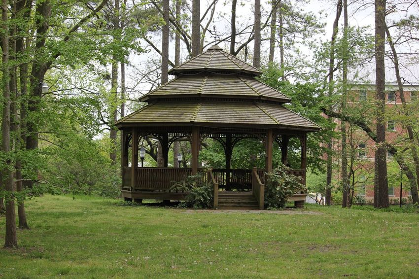 Beauty In Nature Built Structure Day Gazebo Grass Grassy Green Color Growth Idyllic Landscape Lawn Lush Foliage Nature No People Non-urban Scene Outdoors Park Plant Scenics Tranquil Scene Tranquility Tree Tree Trunk Wood - Material
