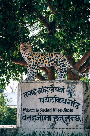 Betahani Village Bardia Betahani Cheetah Entrance Life Shade Sign Statue Text Tree Typography Animal Board Boards Engrave Engraved Engraves Hindi Shadow Signboard Tiger Village Welcome Wild Wildlife