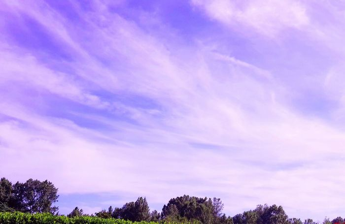 ..nel cielo di questo pomeriggio.. Relaxing .. Taking Photos ..
