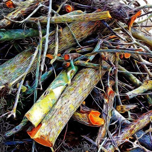 Tornado Hide And Seek NEM Submissions NEM 2013