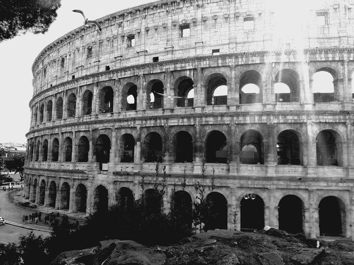 Rome Italy Beauty Colosseum Noir History Travel Destinations Travel Ancient Civilization City Ancient Old Ruin History Arts Culture And Entertainment Cultures Arch The Past Architecture
