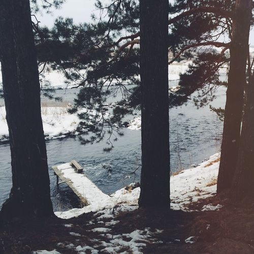 Lake First Eyeem Photo Nature Water Екатеринбург Россия река озеро вода Лес