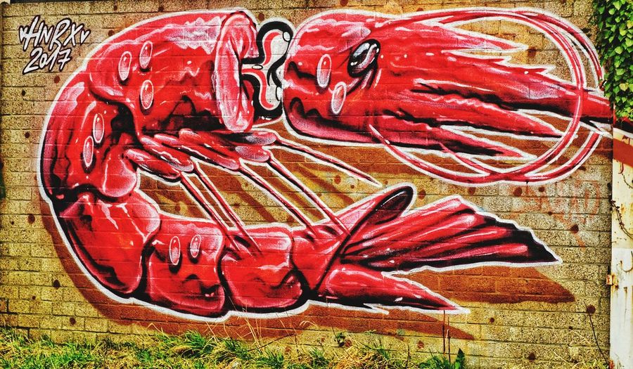 Graffiti Streetart/graffiti Schrimp Near Nuclear Power Station Red No People Day Outdoors Close-up