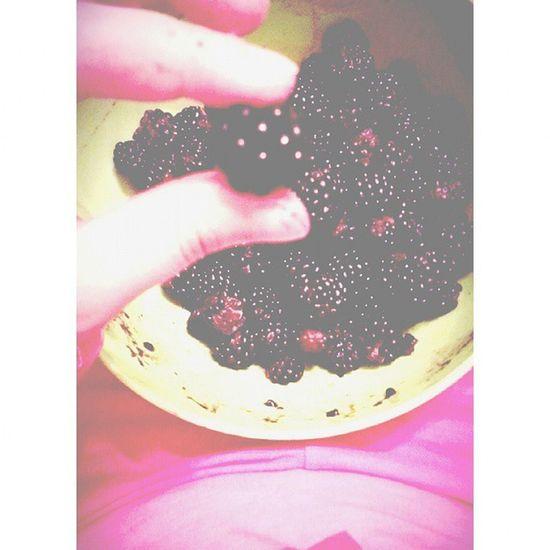 Leziz Meyve Gece Bogurtlen