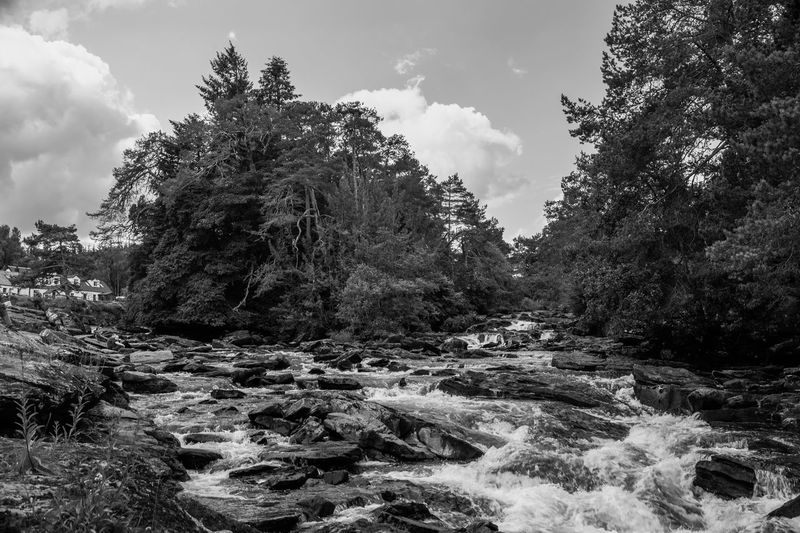 Lomography Neptune Convertible Art Lens System Black And White Blackandwhite Tree Plant Sky Beauty In Nature Nature Scenics - Nature Tranquility No People Cloud - Sky Day Water Growth Tranquil Scene Non-urban Scene Land Rock Forest Rock - Object Outdoors Flowing Water Flowing