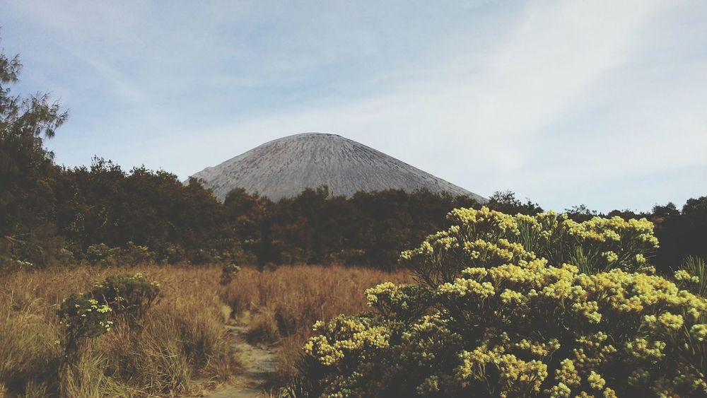 Hello Mahameru Relaxing Check This Out Hanging Out Hello World Wonderful Day Wonderful Indonesia Traveling Mountains Mount Semeru