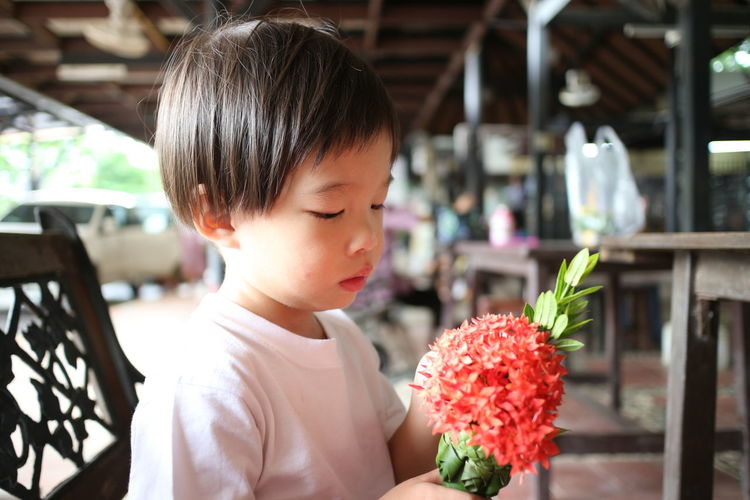 Cute Girl Holding Red Flower Bouquet