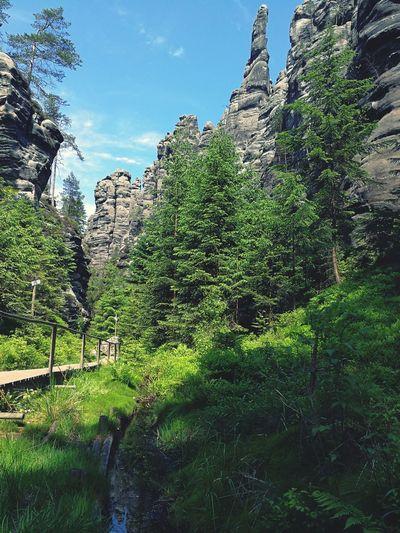 Impressive rock formations in Adrspach-Teplice, Czech Republic. #czechrepublic #czech #nature #landscape #rockformations #forest #Nature  #landscape #nature #photography #czechrepublic