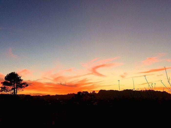 Twilight sky at Lobos Creek Valley, Presidio of San Francisco... Twilight Sky Dusk Presidio Of San Francisco Lobos Creek Valley Evening Walk Iphone6splus