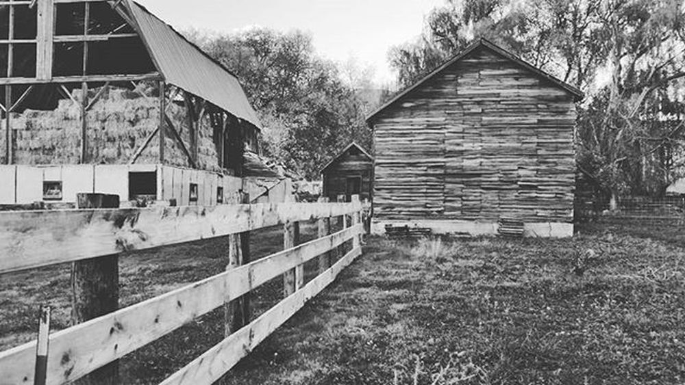 Barn and fence Johnnylopezthephotographer Lnlphotofarmphotography Fall Clouds Sky Classic Mountains Green Skylovers Tree Nature Love Naturelovers WOW Dogs Cats Models Igers Likesforlikes Smile Instagood Smile Lifestyle Life La instafamous famouscaptures farm famous awesome amazing grateful