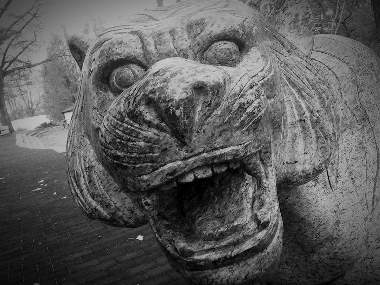 Stone Statue Up Close & Personal Stone - Object B&W Collection B&w Street Photography Walking Around The City  Overcast Stone Carving Tiger Statue Black And White