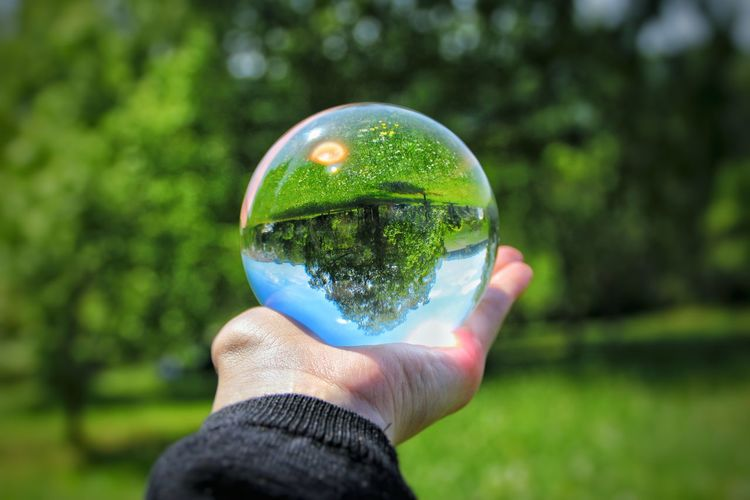 Cropped hand holding crystal ball against trees