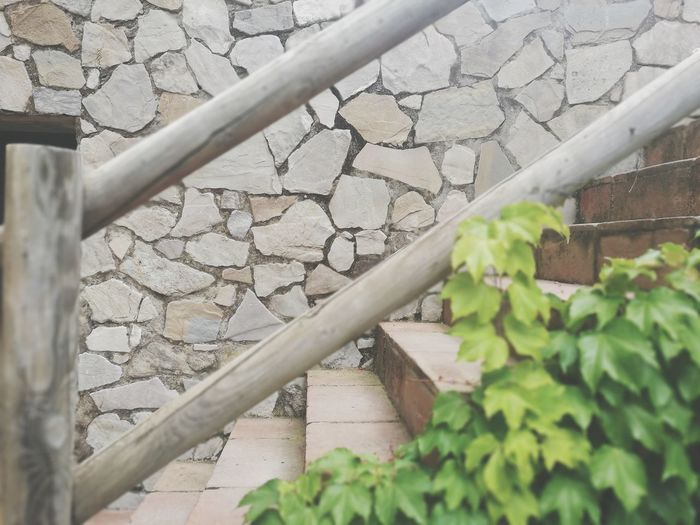 Y ella fue consciente... « Se puede dar por hecho o simplemente no se pide cuando se necesita» . Microhistoriastesis99 Tesis99 Microhistorias Leaves Leaf Verde Verdes Green Escaleras Stairs Microhistorias City Industry Factory Close-up Building Exterior