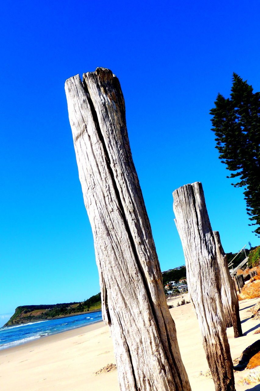 blue, wood - material, clear sky, tree, day, sunlight, nature, outdoors, no people, sky, beach, low angle view, tree trunk, beauty in nature, sand, scenics, dead tree