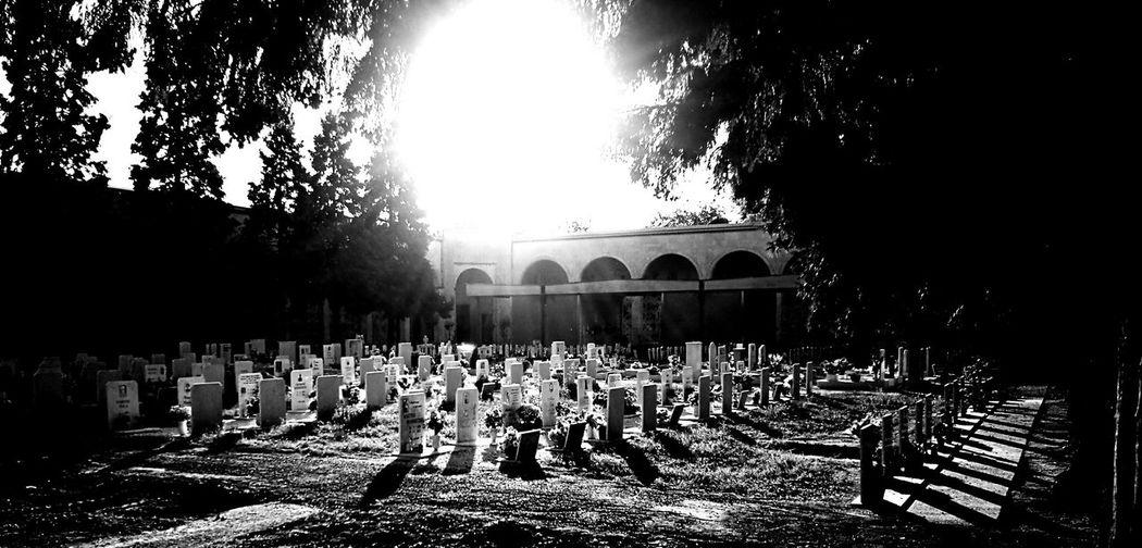 Graves Religion Spirituality Sunlight Cemetery Tombstone Place Of Burial Death Memorial Memories Sunbeam Sun Outdoors Graveyard Memories HDR Parma Emilia-romagna Italy Life & Death Memorial Spirituality Cemetery Death