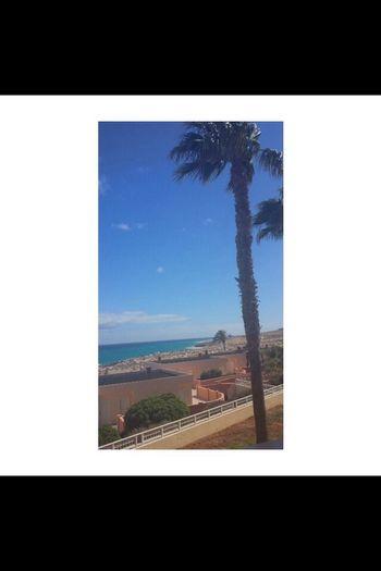 F U E R T E V E N T U R A✨ Fuerteventura Sun Sunshine Summerlove Takemebacktoparadise Takemeback Paradise Last Summer014] Costacalmabeach
