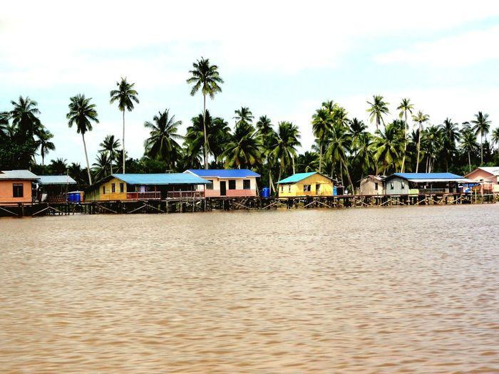 life on the water Borneo Kinabatangan River Tree Water Nautical Vessel Palm Tree Houseboat Sea Beach Stilt House Tropical Climate Sky Coconut Coconut Palm Tree Adventures In The City Going Remote EyeEmNewHere
