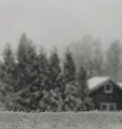 Weather Water Wet Nature No People Day Cold Temperature Close-up Blackandwhite Snow Window Winter