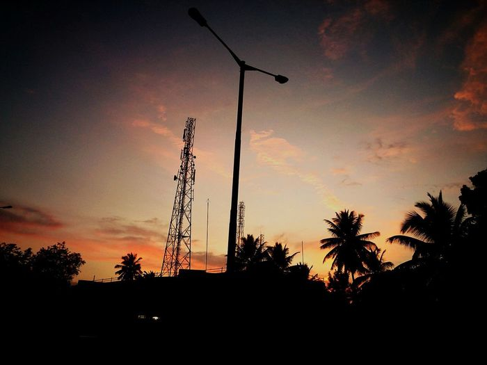 Sunset Low Angle View Scenics Tall - High Nature
